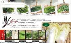 折页菜单图片