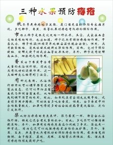 三種水果治痔瘡圖片