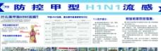 甲型H1N1板报图片