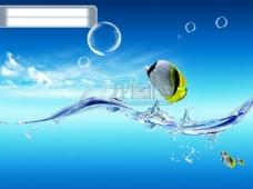 水鱼水泡色彩缤纷可爱小鱼海底天空蓝天碧海