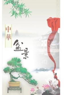 盆景海报图片
