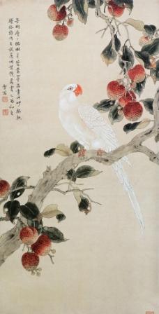 红荔白鹦图图片