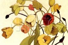 花卉油画61 ( 50厘米 X 70厘米 )