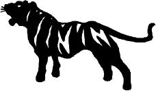 常见动物0996