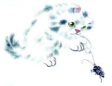 猫专辑0019
