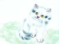 猫专辑0023
