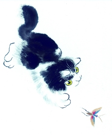 猫专辑0017