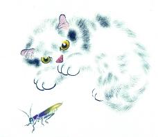 猫专辑0024