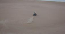 沙漠之舟图片