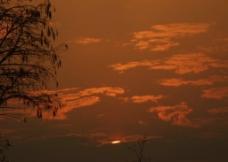 夕阳下图片