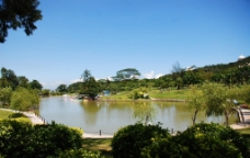 珠海海滨公园湖图片