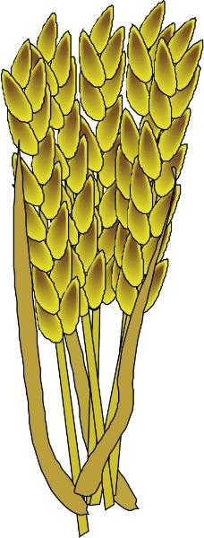 农业机械与庄稼0484