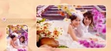 皇室樱花雨图片