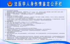 公安制度牌模板PSD下载图片