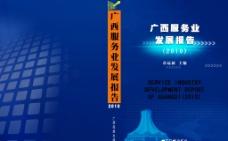 发展报告封面图片