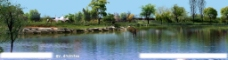 园林景观花草树林鸟瞰透视效果图PSD分层8图片