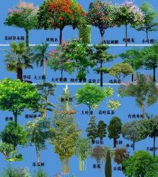 园林景观花草树林鸟瞰透视效果图PSD分层14图片