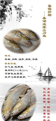 刀鱼 X展架 水墨图片