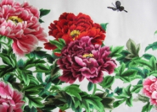 牡丹蝴蝶图片