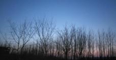 傍晚之夜图片