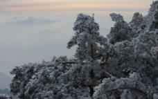 黄山雪景图片