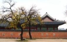 韩国景福宫图片