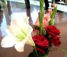 玫瑰百合图片