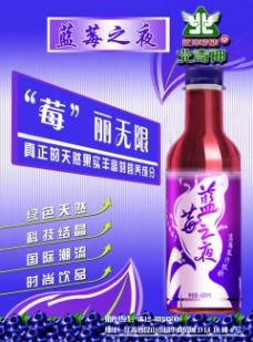 蓝莓之夜海报