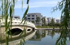 园林景观桥图片