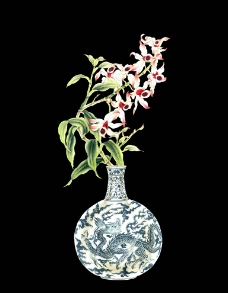 靜物花卉圖片