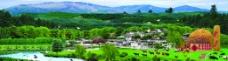 新农村背景图片