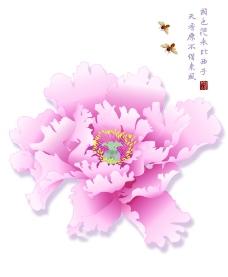 K 0122 牡丹恋图片