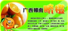 广西脐橙图片