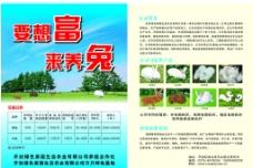 綠色家園圖片